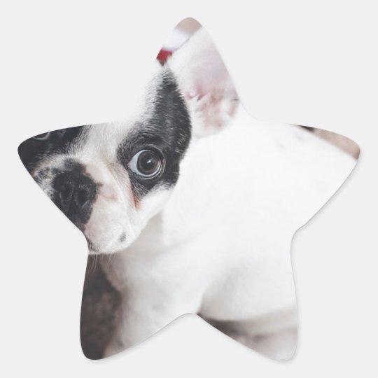 Christmas Frenchie Star Sticker