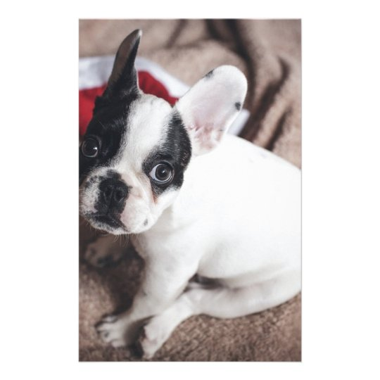 Christmas Frenchie Stationery