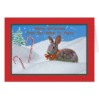 Christmas, From Our Home, Rabbit, Snow, Candy Cane Card