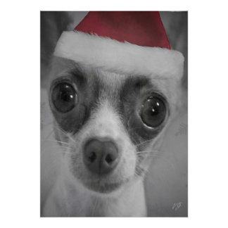 Christmas Funny Chihuahua Puppy with Santa Hat Poster