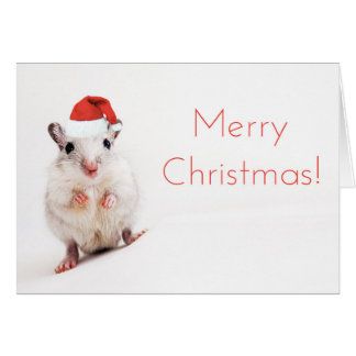Christmas Gerbil Santa Hat Gerbils Santa Clause Card