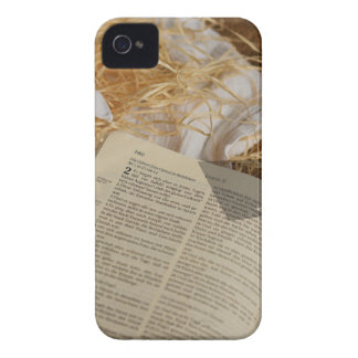 Christmas gift spread the Gospel iPhone 4 Cover