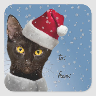 Christmas Gift Tag Stickers Black Cat - Lge or Sm