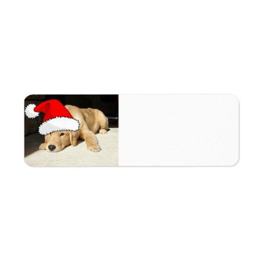 Christmas Golden Retriever Pup