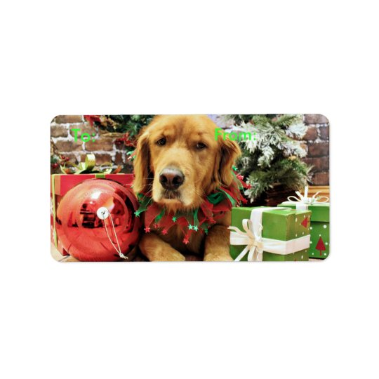 Christmas - Golden Retriever - Zoe