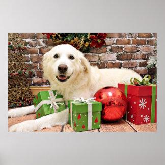 Christmas - Great Pyrenees Labrador X - Ginny Posters