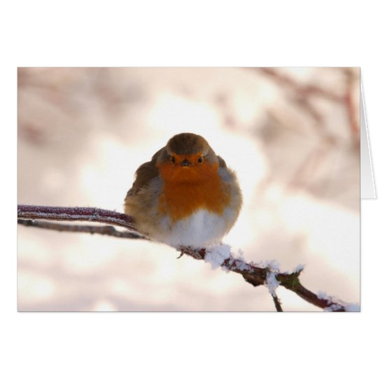 Christmas Greeting Card with Robin