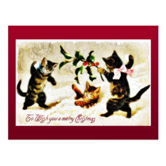 Christmas greeting with three cats playing postcard