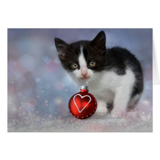 Christmas Heart Ornament Kitten Card
