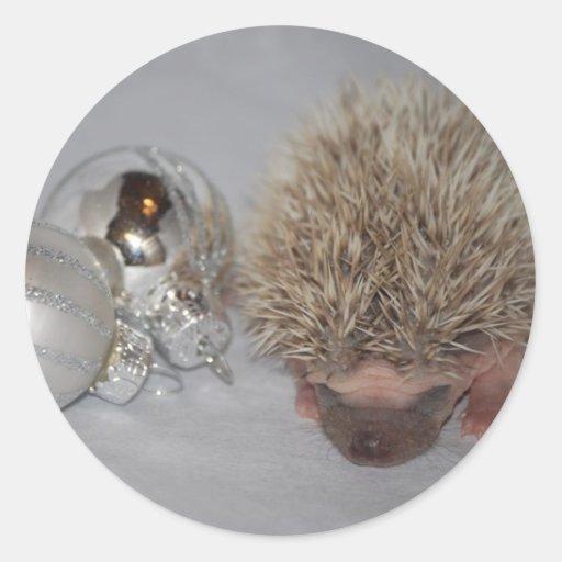 Christmas Hedgehog Round Sticker