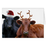 Christmas Holiday Cows in Santa Hat and Antlers