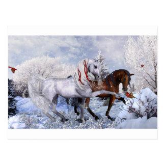 Christmas Holiday Horses Postcard