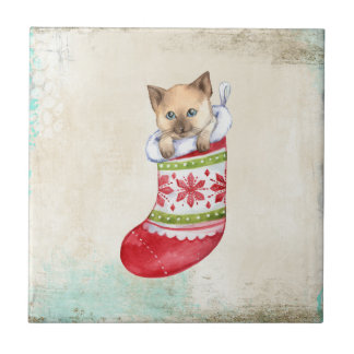 Christmas holiday red and white sock with a cat. ceramic tiles