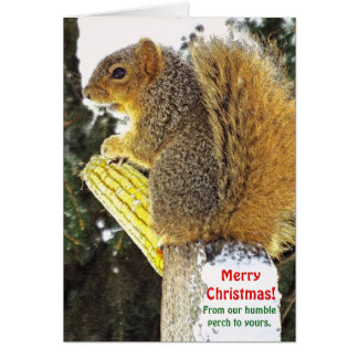 Christmas humour/Squirrel On Log With Corn Cob Card