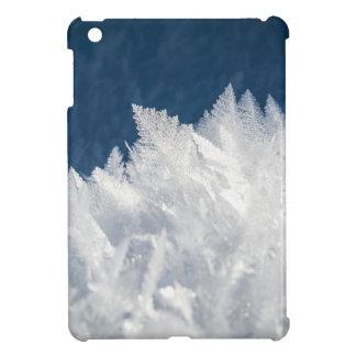 christmas ice favor iPad mini covers