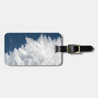 christmas ice favor luggage tag
