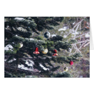 Christmas in the Woods | Photo Greeting Card
