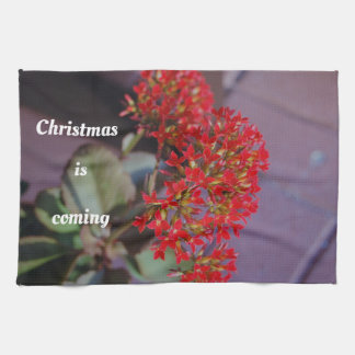 Christmas is coming red flowers kitchen towel