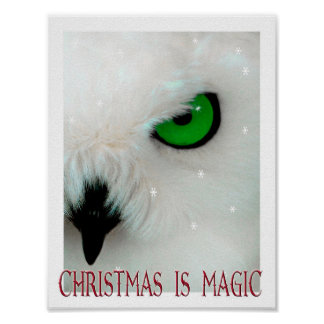 Christmas Is Magic Owl magic wizard art kid's Poster