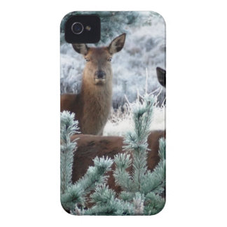 christmas joy time iPhone 4 case