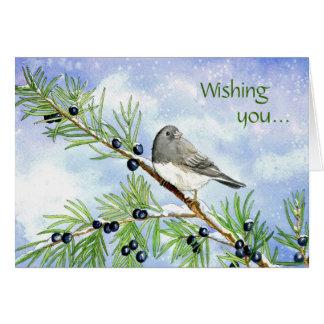 Christmas junco in the juniper card