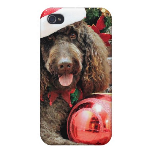 Christmas - LabraDoodle - Harley iPhone 4/4S Covers