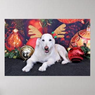 Christmas - LabraDoodle - Izzy Print