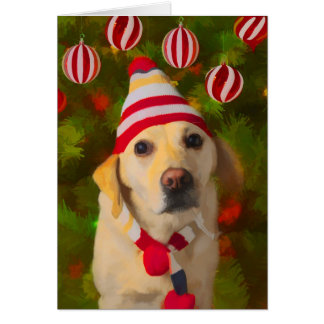 Christmas Labrador card, dog in knit hat Card