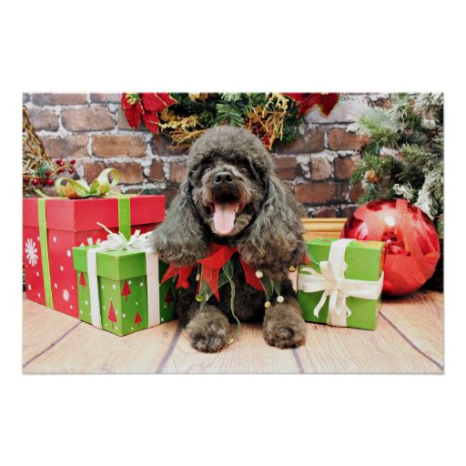 Christmas - LhasaPoo - Bogey Posters