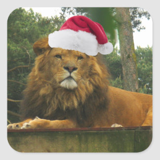 Christmas Lion Wearing Santa Hat Square Sticker