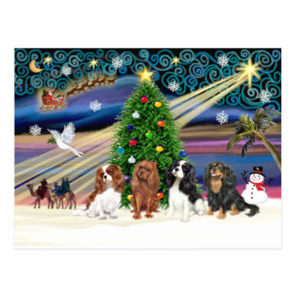 Christmas Magic /  Cavalier King Charles (four) Postcard
