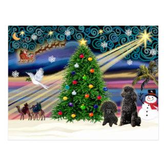 Christmas Magic Poodles (two black Toy) Postcard