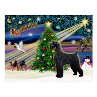 Christmas Magic Schnauzer (black Giant) Postcard