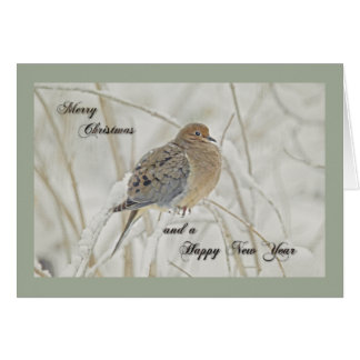 Christmas & New Year Greeting - Mourning Dove Greeting Card