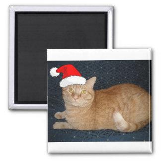 Christmas Orange Tabby Cat Square Magnet