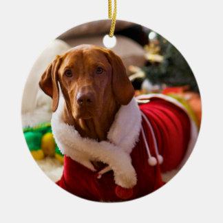Christmas Ornament (Holly)