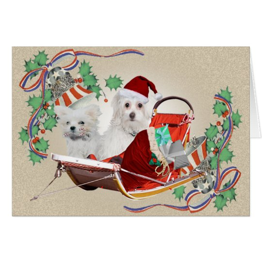 Christmas patriotic bell Maltese Card