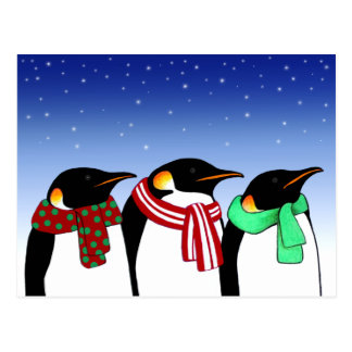 Christmas Penguins Holiday Post Card
