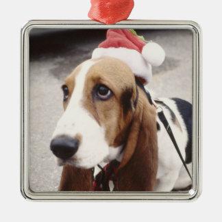 Christmas Pet Photo  Holidays Xmas Metal Ornament
