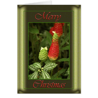 Christmas Pine Cone Card