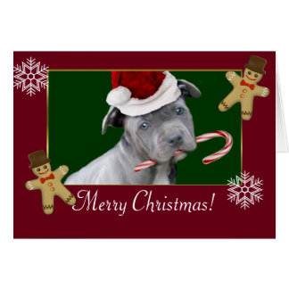 Christmas Pitbull puppy Card