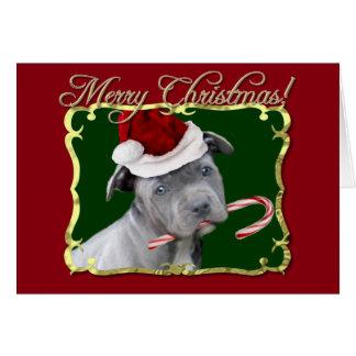 Christmas Pitbull puppy Greeting Card