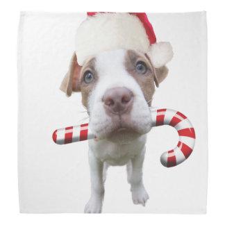 Christmas pitbull - santa pitbull -santa claus dog bandana