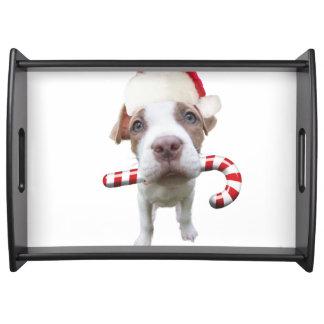 Christmas pitbull - santa pitbull -santa claus dog serving tray