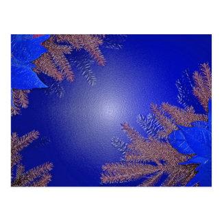 Christmas Poinsettia Blue Postcard