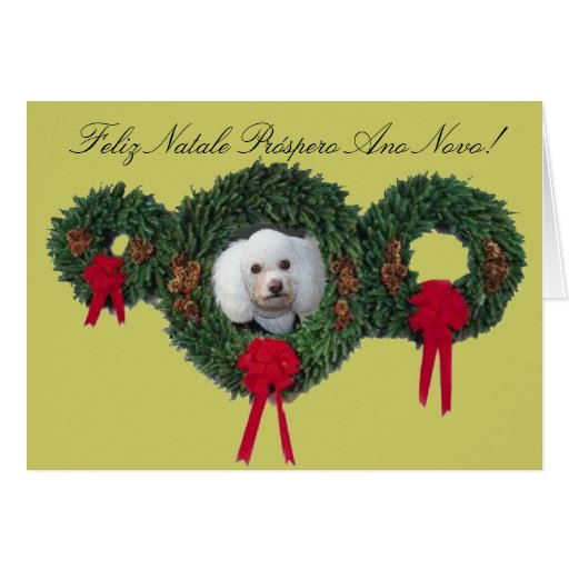 Christmas poodle card
