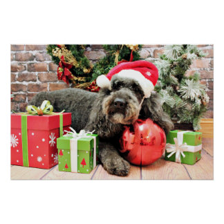 Christmas - Poodle - Cooper Posters