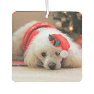 Christmas  poodle dog air freshener