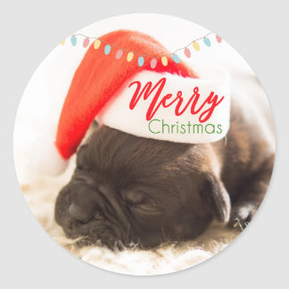 Christmas Pug in Santa Hat with Christmas Lights Classic Round Sticker
