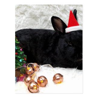 Christmas Rabbit Postcard